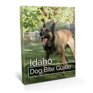 Idaho Dog Bite Guide